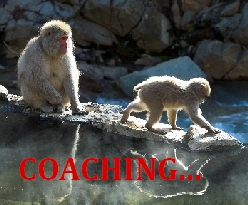 Over coaching